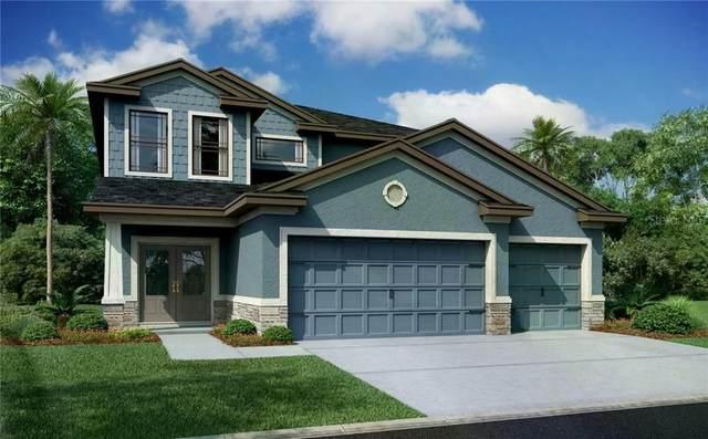 7157 Heron Walk, Wesley Chapel, FL 33545 (MLS #W7827774) :: Team Bohannon Keller Williams, Tampa Properties