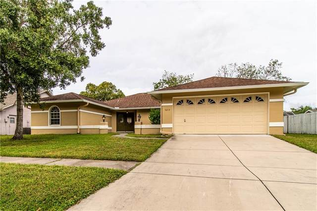 9215 Ruger Drive, New Port Richey, FL 34655 (MLS #W7827786) :: Ramos Professionals Group