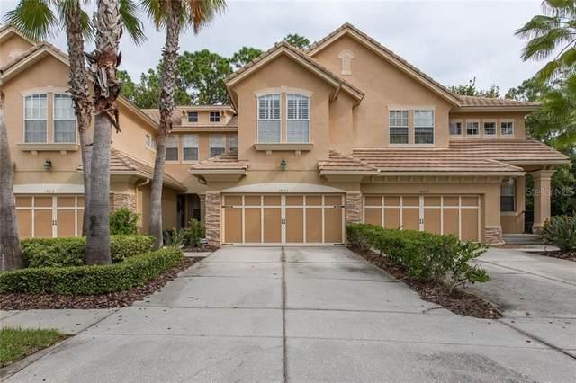14611 Mirabelle Vista Circle, Tampa, FL 33626 (MLS #W7827836) :: Cartwright Realty