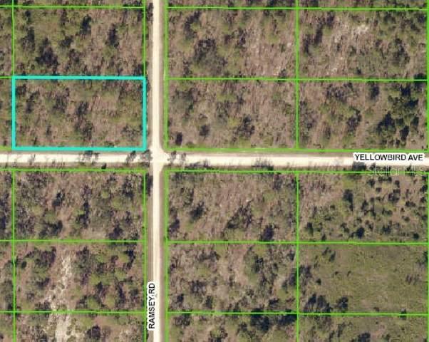 9385 Yellowbird Avenue, Weeki Wachee, FL 34614 (MLS #W7827851) :: Griffin Group