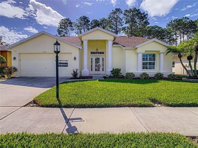 11204 Windrush Circle, Hudson, FL 34667 (MLS #W7827929) :: Cartwright Realty