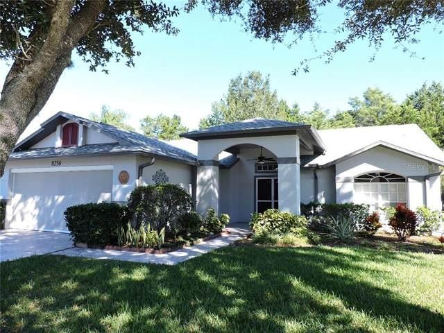 8256 Sugarbush Drive, Spring Hill, FL 34606 (MLS #W7827956) :: Pepine Realty