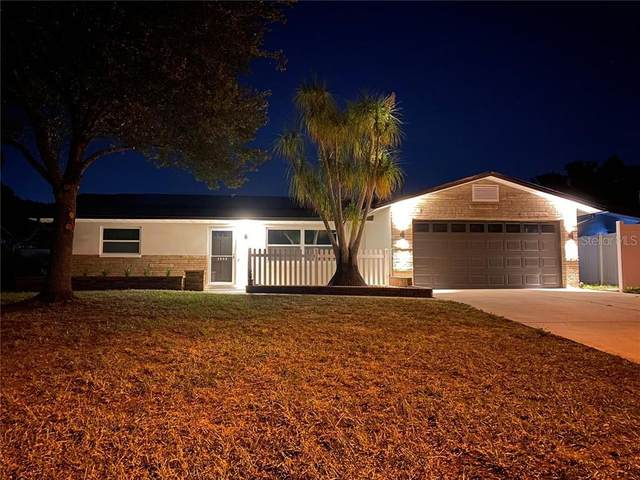 3058 Hoyt Avenue, Clearwater, FL 33759 (MLS #W7827979) :: Godwin Realty Group