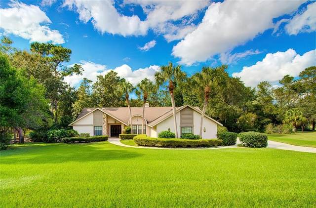 4619 Lake In The Woods Drive, Weeki Wachee, FL 34607 (MLS #W7827998) :: Premium Properties Real Estate Services