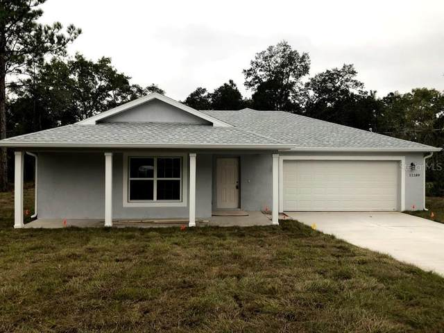 12480 Meadow Swallow Avenue, Brooksville, FL 34613 (MLS #W7828002) :: Premium Properties Real Estate Services