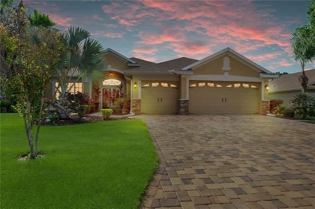 663 Norwalk Court, Spring Hill, FL 34609 (MLS #W7828010) :: Pepine Realty