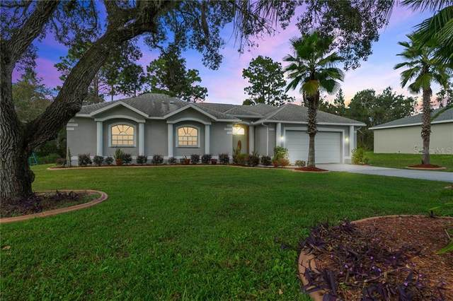 11129 Lomita Wren Road, Weeki Wachee, FL 34614 (MLS #W7828038) :: Pepine Realty