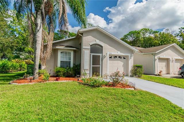 12518 Hollybrook Lane, Hudson, FL 34669 (MLS #W7828041) :: Young Real Estate