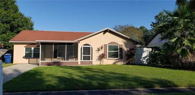 3424 Murrow Street, New Port Richey, FL 34655 (MLS #W7828135) :: Griffin Group
