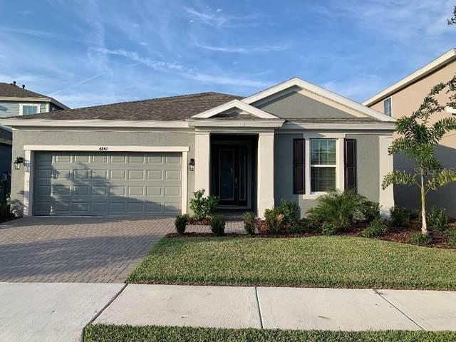4842 Ballantrae Boulevard, Land O Lakes, FL 34638 (MLS #W7828161) :: Griffin Group