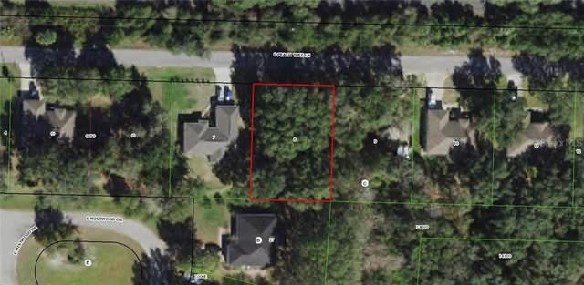 9532 E Peachtree Lane, Inverness, FL 34450 (MLS #W7828300) :: Delgado Home Team at Keller Williams