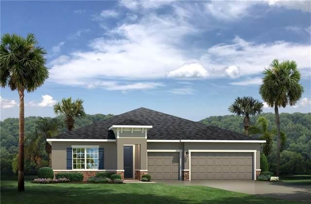 29464 Sedgeway Boulevard, Wesley Chapel, FL 33544 (MLS #W7828376) :: Griffin Group