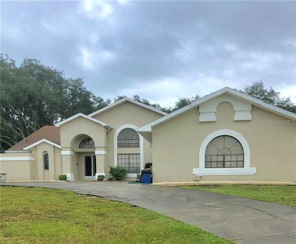 18314 Treehaven Drive, Hudson, FL 34667 (MLS #W7828383) :: Griffin Group