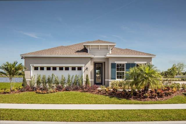 18242 Falling Pine Needle Lane, Land O Lakes, FL 34638 (MLS #W7828402) :: Team Bohannon Keller Williams, Tampa Properties