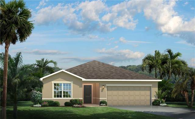 18216 Falling Pine Needle Lane, Land O Lakes, FL 34638 (MLS #W7828405) :: Team Bohannon Keller Williams, Tampa Properties