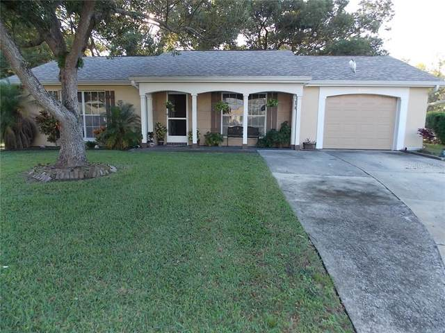 12103 Longstrap Lane, Hudson, FL 34667 (MLS #W7828430) :: Carmena and Associates Realty Group