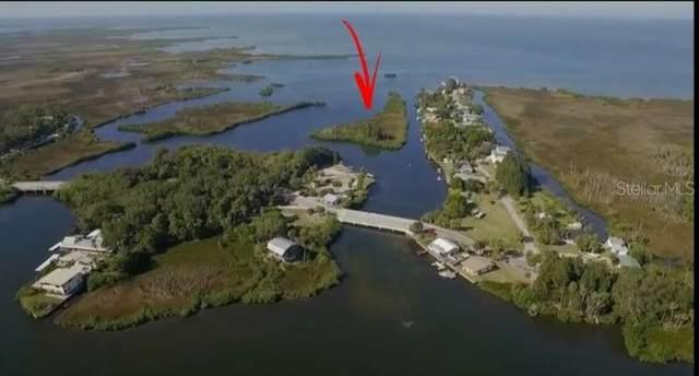 0 Sunset Vista Drive, Spring Hill, FL 34607 (MLS #W7828437) :: Delgado Home Team at Keller Williams