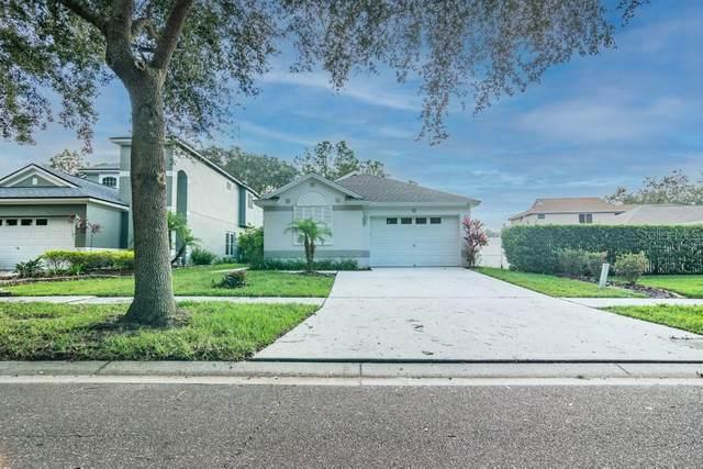 6128 Kiteridge Drive, Lithia, FL 33547 (MLS #W7828445) :: Team Bohannon Keller Williams, Tampa Properties
