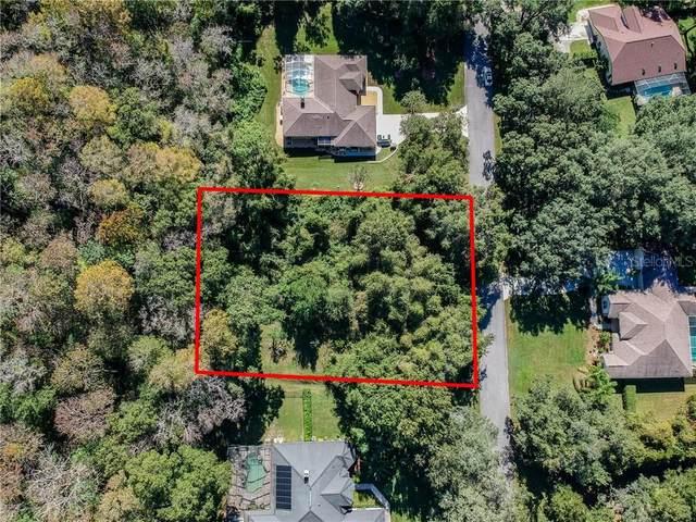 12248 Cassowary Lane, Spring Hill, FL 34610 (MLS #W7828605) :: Baird Realty Group