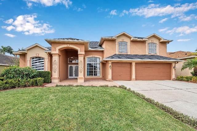 10242 Newington Drive, Orlando, FL 32836 (MLS #W7828632) :: Griffin Group