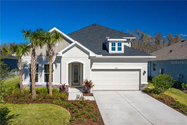 3025 Satilla Loop, Odessa, FL 33556 (MLS #W7828654) :: Premier Home Experts