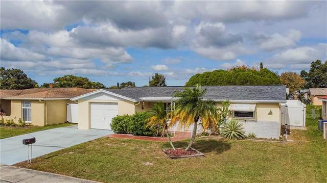 7221 Castanea Drive, Port Richey, FL 34668 (MLS #W7828681) :: Carmena and Associates Realty Group