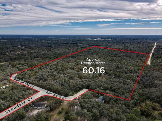 13213 Gennaro Road, Hudson, FL 34669 (MLS #W7828688) :: Pepine Realty
