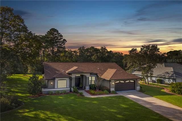 18845 Bascomb Lane, Hudson, FL 34667 (MLS #W7828701) :: Rabell Realty Group