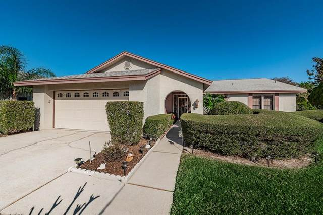 4037 Ashley Court, Holiday, FL 34691 (MLS #W7828705) :: Griffin Group