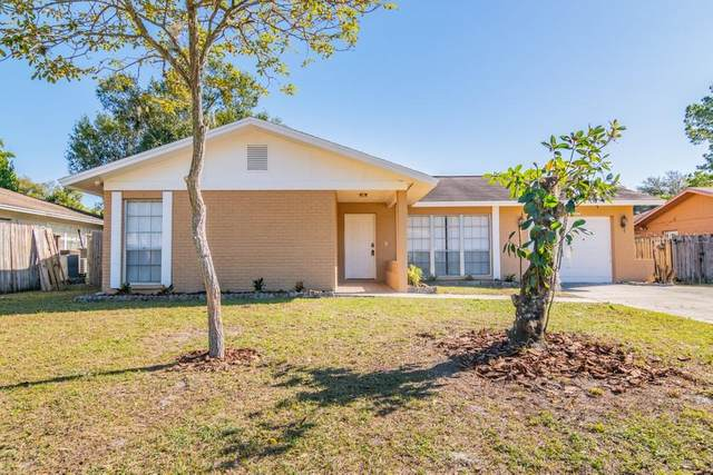 14503 Mainland Greens Place, Tampa, FL 33625 (MLS #W7828713) :: Team Bohannon Keller Williams, Tampa Properties