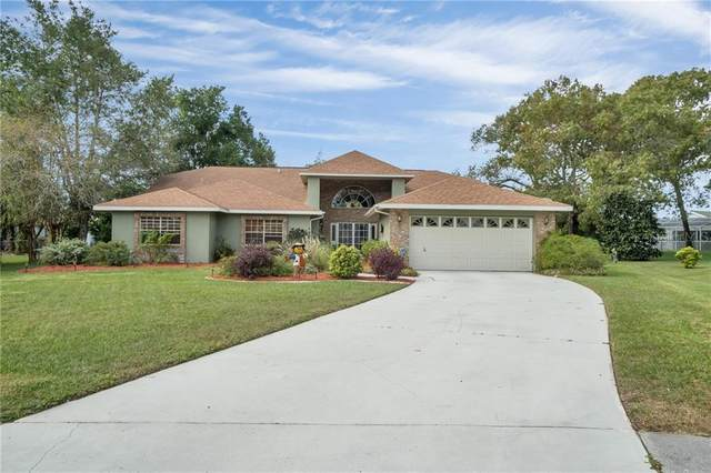 1275 Caballero Court, Spring Hill, FL 34608 (MLS #W7828721) :: Premier Home Experts