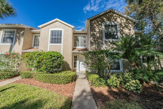 2204 Andover Circle, Palm Harbor, FL 34683 (MLS #W7828738) :: RE/MAX Marketing Specialists