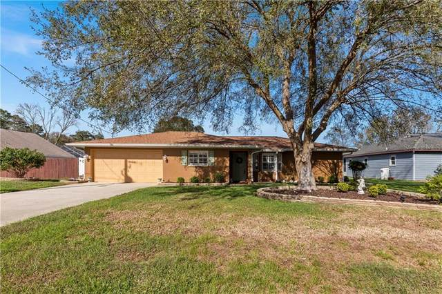 12535 Little Farms Drive, Spring Hill, FL 34609 (MLS #W7828801) :: Bustamante Real Estate