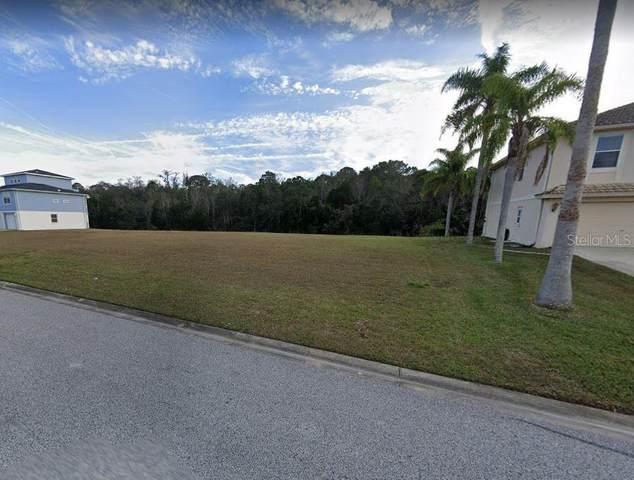 3520 Jewfish Drive, Hernando Beach, FL 34607 (MLS #W7828816) :: Delgado Home Team at Keller Williams