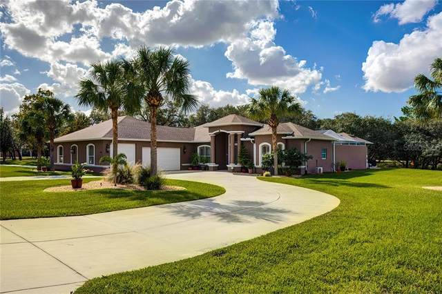 11145 Mountain Mockingbird Rd, Weeki Wachee, FL 34614 (MLS #W7828823) :: Bridge Realty Group