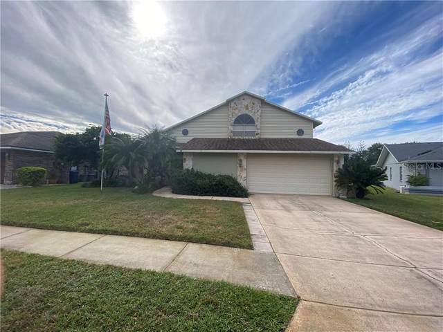 5841 Redhawk Drive, New Port Richey, FL 34655 (MLS #W7828831) :: EXIT King Realty