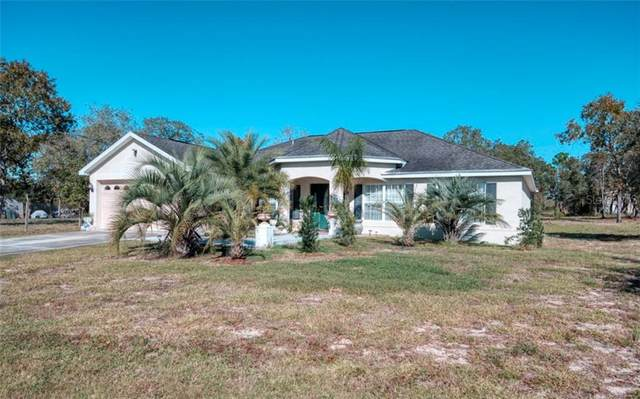 13123 Johnathan Drive, Weeki Wachee, FL 34614 (MLS #W7828841) :: Bridge Realty Group