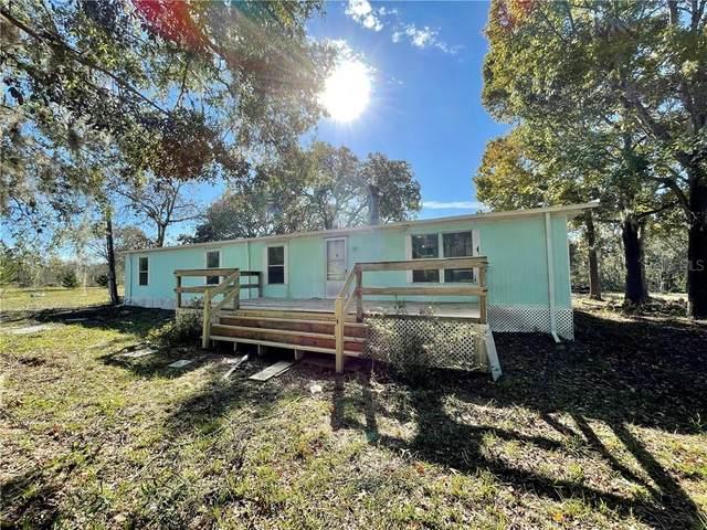 11468 Maripoe Road, Brooksville, FL 34614 (MLS #W7828879) :: The Heidi Schrock Team