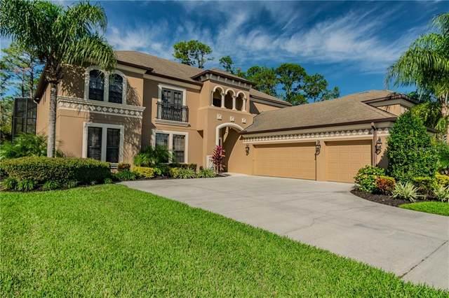 14937 Princewood Lane, Land O Lakes, FL 34638 (MLS #W7828910) :: U.S. INVEST INTERNATIONAL LLC