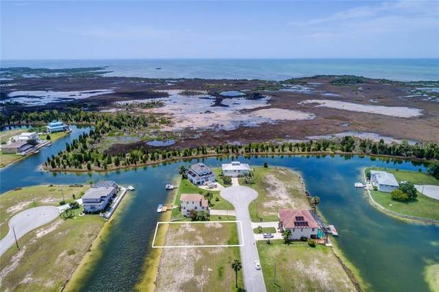 3400 Sheephead Drive, Hernando Beach, FL 34607 (MLS #W7828918) :: Lockhart & Walseth Team, Realtors