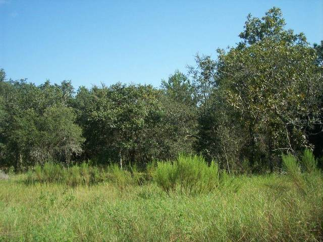 0 County Line Road, Spring Hill, FL 34609 (MLS #W7828921) :: Everlane Realty