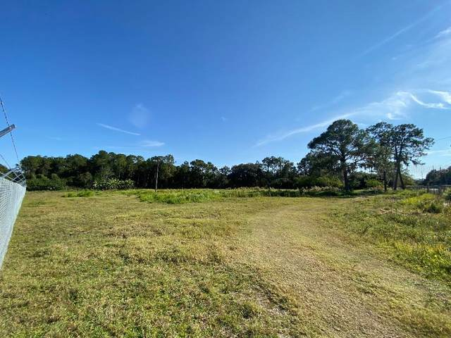 Thornhill Road, Auburndale, FL 33823 (MLS #W7828973) :: Young Real Estate