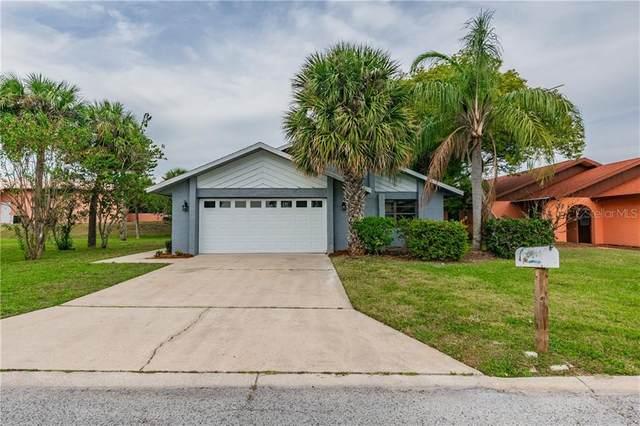 4427 Dewey Drive, New Port Richey, FL 34652 (MLS #W7828997) :: Baird Realty Group