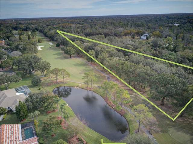 0 E Lake Road, Tarpon Springs, FL 34688 (MLS #W7829052) :: Coldwell Banker Vanguard Realty