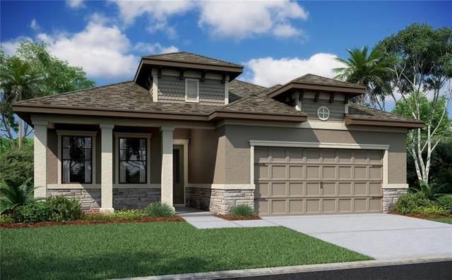 11433 Crowne Pointe Street, New Port Richey, FL 34654 (MLS #W7829231) :: Pepine Realty