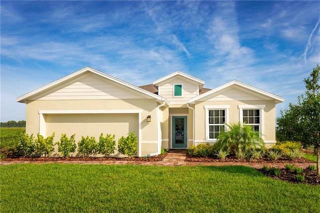 318 Winter Bliss Lane, Mount Dora, FL 32757 (MLS #W7829538) :: Pepine Realty