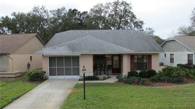 11625 Pear Tree Drive, New Port Richey, FL 34654 (MLS #W7829555) :: Premier Home Experts