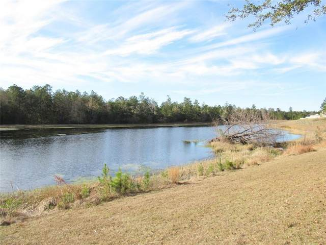 5777 Summit View Drive, Brooksville, FL 34601 (MLS #W7829601) :: Griffin Group