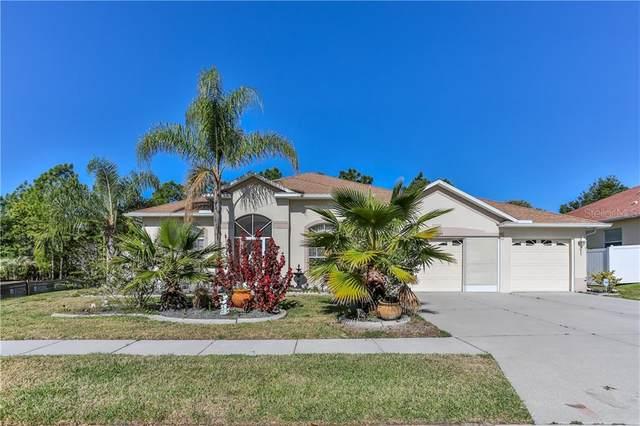 13829 Flintlock Drive, Spring Hill, FL 34609 (MLS #W7829636) :: Everlane Realty