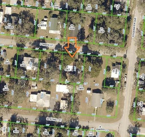 29070 Forbes Street, Nobleton, FL 34661 (MLS #W7829644) :: Baird Realty Group